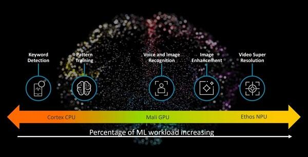 Arm AI platform for ML